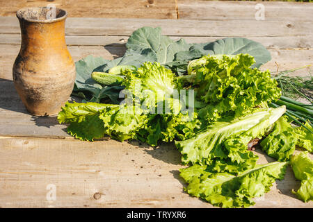 different vegetables with brown jug on rustic wooden table on summer day closeup - Stock Image