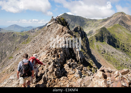 Hikers scrambling on Crib Goch ridge scramble at start of Snowdon Horseshoe with Mount Snowdon in distance. Snowdonia - Stock Image