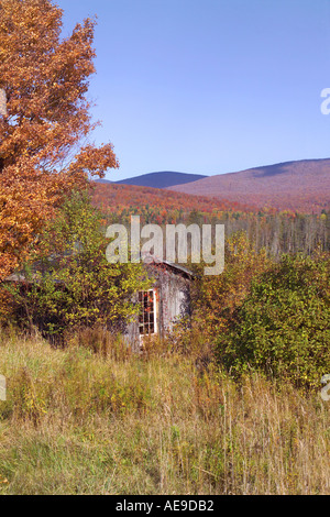 Shed and fall foliage Vermont - Stock Image