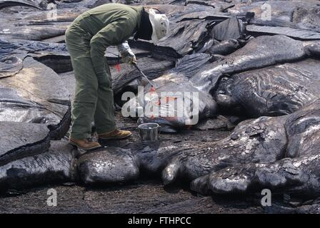 A USGS geologist at the Hawaiian Volcano Observatory takes fresh lava samples as close to the vent as possible March - Stock Image