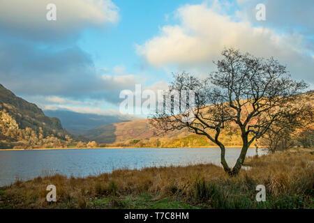 Llyn Gwynant Lake on a sunny Winter day - Stock Image