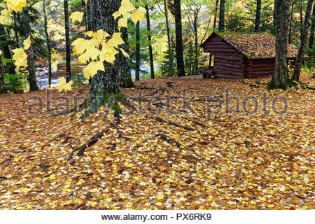 Machias Rips campsites, Washington County, Maine, USA - Stock Image