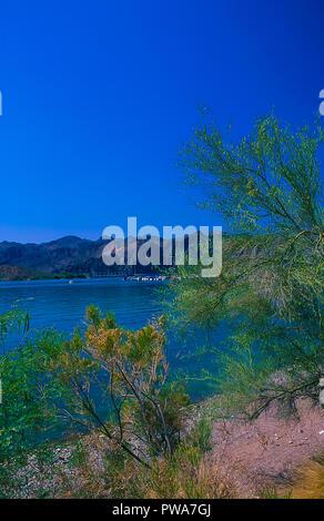Desert scenes from the McDowell Mountain Regional Park near Phoenix, Arizona USA - Stock Image