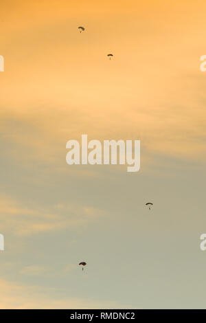 Silhouette of parachutists flying slowly on parachute in the beautiful sky at sunset. - Stock Image