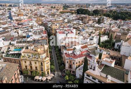 Elevated view of streets and buildings in the old town quarter, Seville, Andalucia, Spain. - Stock Image