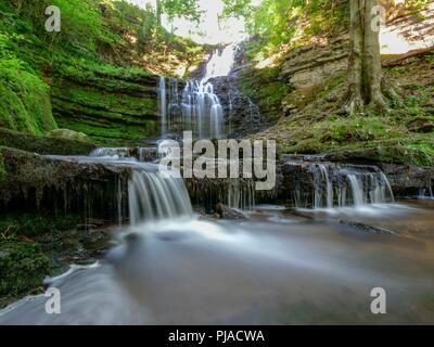 Settle, UK. 5th September 2018. UK Weather unusually hot sunny September day at Scaleber Force Waterfall, High Hill lane, Settle, Yorkshire Credit: Doug Blane/Alamy Live News - Stock Image
