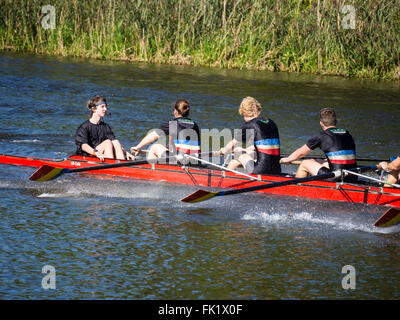 Rowing regatta, river Aller, Celle, Germany - Stock Image