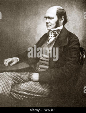 Charles Darwin, 1856 photographic studio portrait of the great naturalist and scientist, author of On the Origin of Species published in 1859 - Stock Image