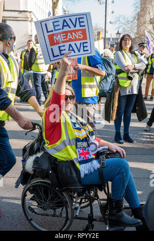 London, UK. February 23rd 2019. Pro Brexit ÔYellow VestsÕ marched escorted by police from Trafalgar Square down Whitehall and Parliament Street to Parliament Square. Traffic was held longest outside Downing Street and at the Parliament Square junction. Angry drivers sounded their horns. The ÔYellow VestsÕ then marched back again. They carried placards stating Leave Means Leave, supporting leaving the EU without a deal. Credit: Stephen Bell/Alamy Live News. - Stock Image