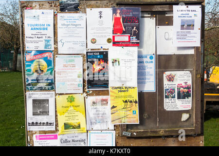 Community noticeboard covered with posters detailing local and regional events in the coastal village of Arnside, Cumbria. - Stock Image