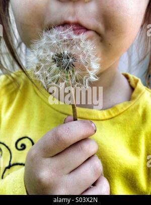 Girl and dandelion flower - Stock Image