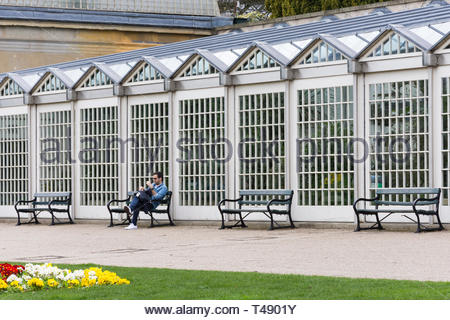 The botanical gardens in Sheffield, South Yorkshire, England, UK, one of the many green spaces in the industrial city. - Stock Image