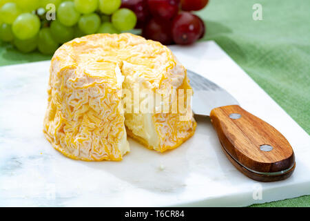 Langres, French cow milk soft cheese, creamy and crumbly with white rind, French cheeses collection - Stock Image