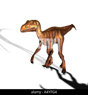 The Deinonychus occurred also terrible claw geannt in the lower Cretaceous period. The second foot toe approx. 13 - Stock Image