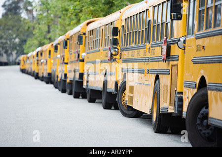 Yellow school buses lined in a row - Stock Image