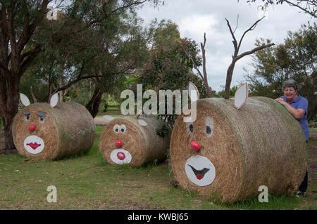 Farmer posing with the Christmas decor on her hay bales in rural South Gippsland, Victoria, Australia - Stock Image