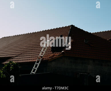 Silhouette of an unidentifiable man on a roof next to a ladder with copy space. - Stock Image