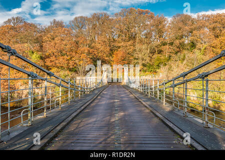 Whorlton suspension bridge over the river Tees, Teesdale, County Durham, UK in autumn sunshine - Stock Image