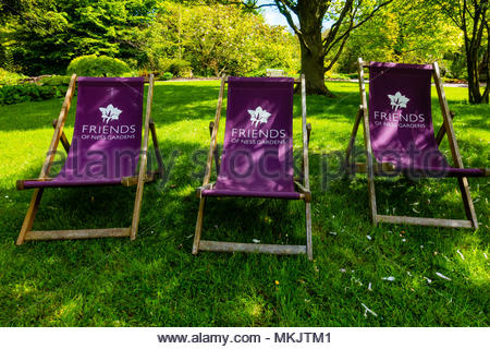 Friends of Ness Gardens deck chairs or sun loungers at The University of Liverpool's Ness Botanical  Gardens Ness Gardens, Ness, Wirral, Merseyside England UK Credit: Christopher Canty Photography/Alamy Live News - Stock Image