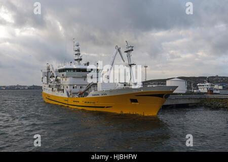 Shetland pelagic trawler unloading catch of mackerel in Lerwick. October 2012. - Stock Image