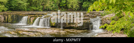 Panorama of Upper Falls, Aysgarth, Wensleydale, Yorkshire Dales National Park, UK in late spring with very low water level - Stock Image