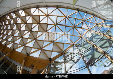Herbert Art Gallery and Museum interior showing the geodesic timber and glass roof, taken with a fisheye lens. - Stock Image