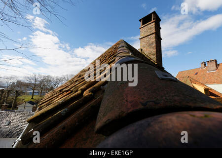 Gamle Bergen or old Bergen is an open-air museum with some 40 wooden houses in typical Norwegian style from 18th, - Stock Image