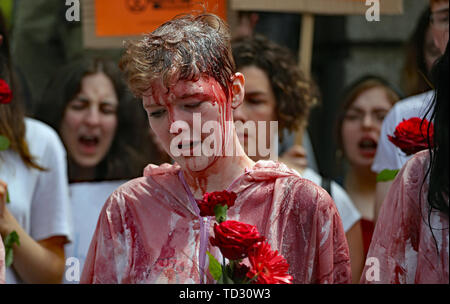 Demonstrators at a climate change protest outside Leinster House in Dublin. - Stock Image