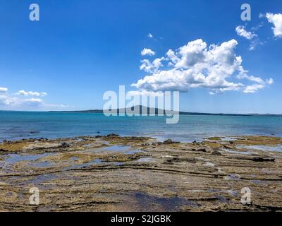 St heliers, Auckland - Stock Image