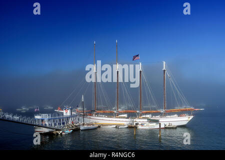 Four masted schooner 'Margaret Todd', anchored in Frenchman Bay, Bar Harbor, Maine, USA. - Stock Image