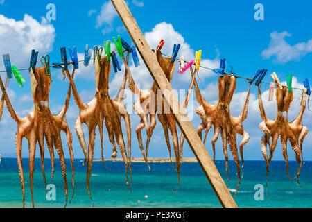 Drying octopus in Chania, Crete, Greece - Stock Image