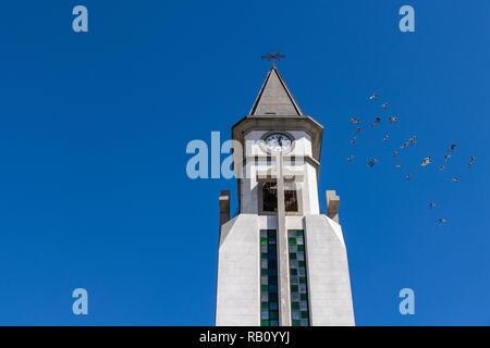 Pigeons flying around the clock tower of the chapel of Nuestra Senora de Bonanza in El Paso, La Palma, Canary Islands, Spain - Stock Image