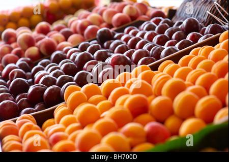 Stone fruit at fruit market - Stock Image