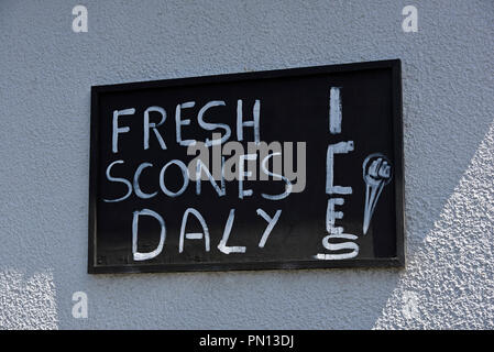 Miss-spelled hand-painted advertising sign 'FRESH SCONES DALY ICES'. Appleby-in-Westmorland, Cumbria, England, United Kingdom, Europe. - Stock Image