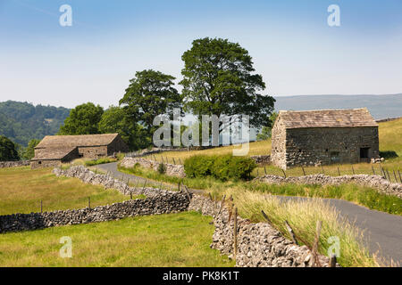 UK, Yorkshire, Wharfedale, Kettlewell, stone agricultural field barns beside B6160 road to Upper Wharfedale - Stock Image