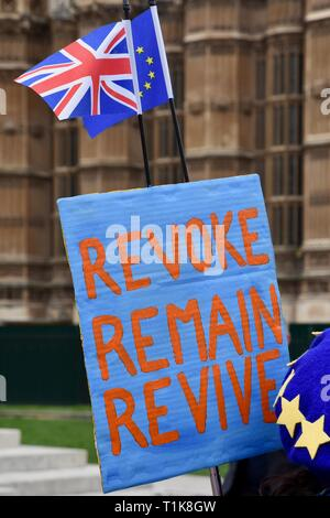 London, UK. 27th March, 2019. Remainer Placard. Anti Brexit Protests in Westminster, Houses of Parliament, Westminster, London. UK Credit: michael melia/Alamy Live News - Stock Image