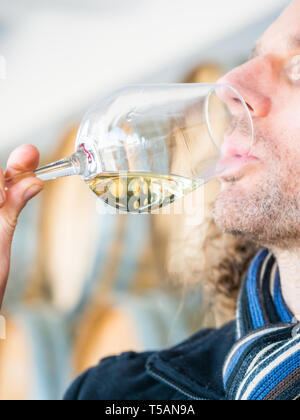 Young man tasting white wine during wine tasting in a winery in Setugal wine region, Portugal. - Stock Image