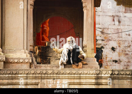 A Sadhu with a long white beard and his dog are sitting on a Ghat in Varanasi. Sadhu is an ascetic or someone who practice yoga - Stock Image