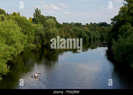 Man in inflatable kayak on River Tees, Yarm, North Yorkshire, England UK - Stock Image