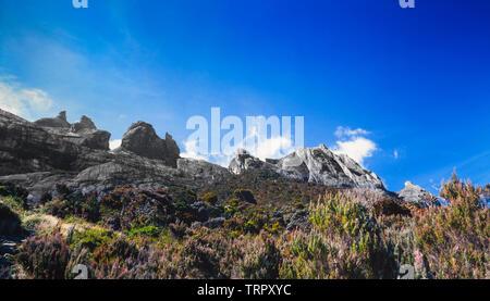 Mount Kinabalu National Park, Sabah, East Malaysia. Summit trail, view AT 3200 meteres, showing scrub like habitat. - Stock Image