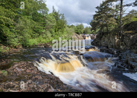 Low Force, Teesdale, County Durham, UK - Stock Image