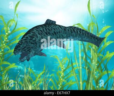 Dunkleosteus / Dunkleosteus - Stock Image