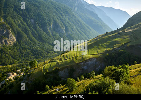 Terrace farming in the Romanche Valley in summer. Le Chazelet, Ecrins National Park, Hautes-Alpes, French Alps, France - Stock Image
