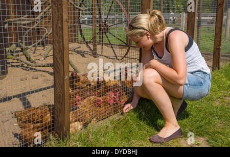 Young woman with chickens at animal sanctuary. - Stock Image
