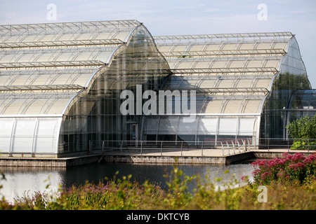 The Glasshouse, Royal Horticultural Gardens Wisley, Woking, Surrey. - Stock Image