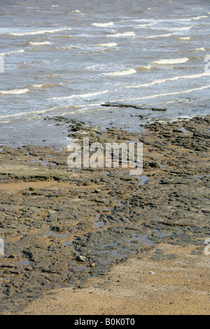 Beach and Seashore at the Naze, Walton on the Naze, Essex - Stock Image