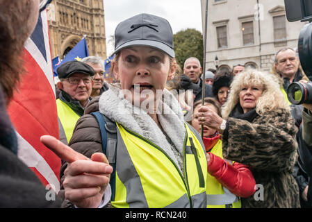 London, UK. 15th January 2019. A yellow jacketed woman points her finger and berates a man who tired to give her a leaflet. Groups against leaving the EU, including SODEM, Movement for Justice and In Limbo and Brexiteers Leave Means Leave and others protest opposite Parliament as Theresa May's Brexit deal was being debated.  While the two groups mainly kept apart, a small group, some in yellow jackets came to shout insults at pro-EU campaigners, while police tried to keep the two groups separate. Credit: Peter Marshall/Alamy Live News - Stock Image