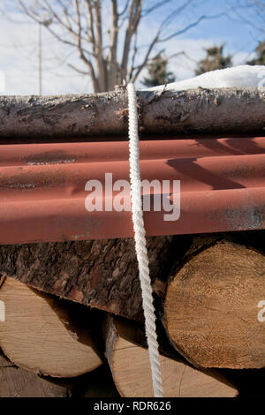 Detail of bunch of trunks. - Stock Image