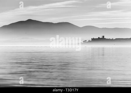 Beautiful view of Trasimeno lake at sunset with birds on water and Castiglione del Lago town - Stock Image