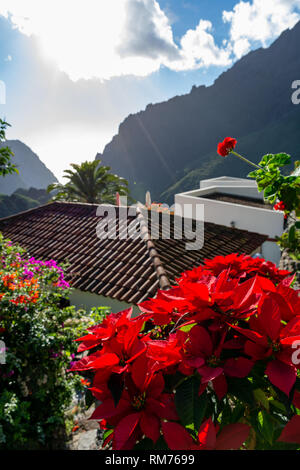 View on remotely located in the mountains picturesque village Masca, Tenerife, Canary Islands, Spain - Stock Image